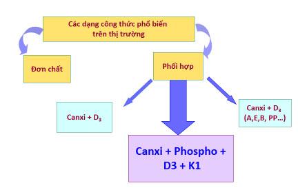 Vitamin D3 và vitamin K giúp canxi được hấp thụ tối đa
